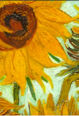 """Sunflowers""-now-synonymous-with-Dutch-artist-Vincent-Van-Gogh"
